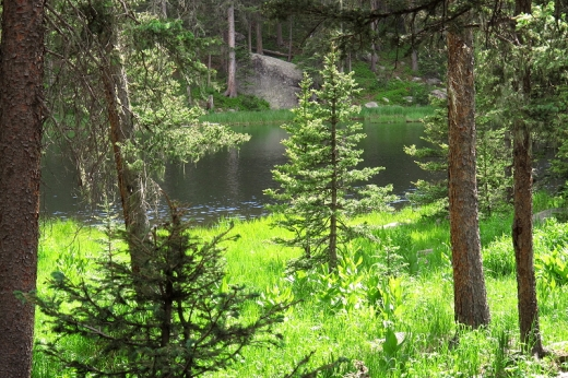 Stewart Lake - Pecos Wilderness