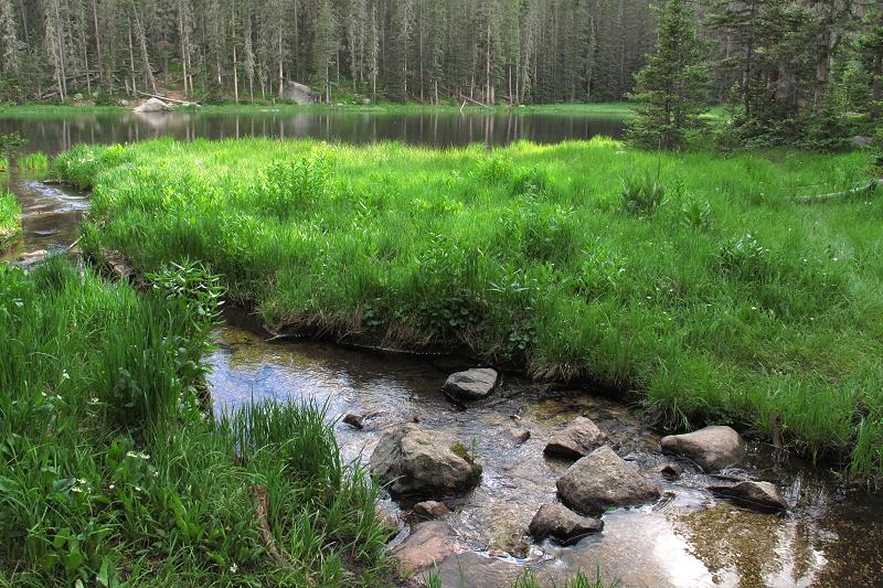 Flowing into Stewart Lake