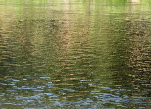 River slowly grew still....