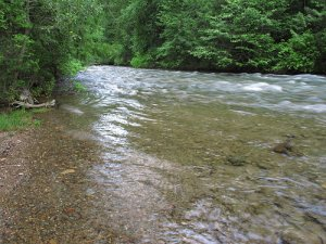 Trout Creek Looking Like a River