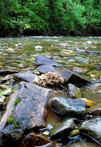 Trout Creek - 9 - 2 030