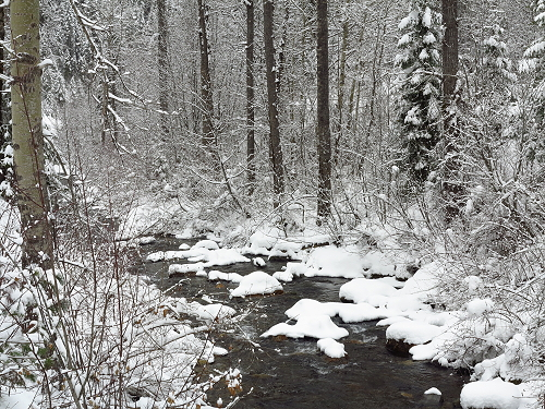 Placer Creek Snow 050